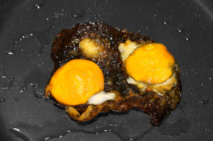 This is not your brain on drugs. These are burnt eggs.